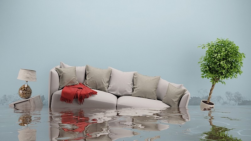 Water Damage Restoration and Flood Remediation